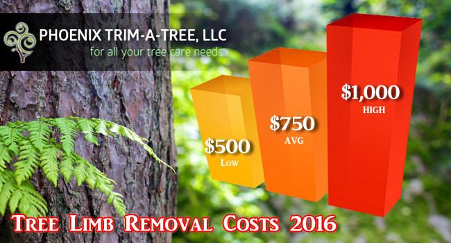 Tree-Limb-Removal-Cost-2016-Estimates-Average-Costs